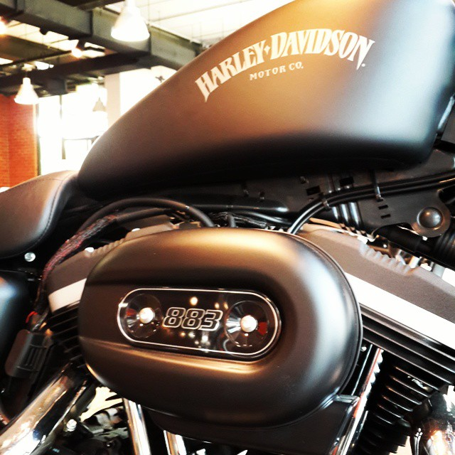 #Harley pics