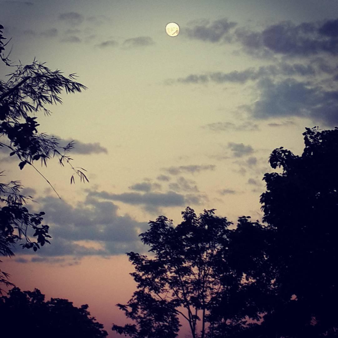 #Moon at dusk